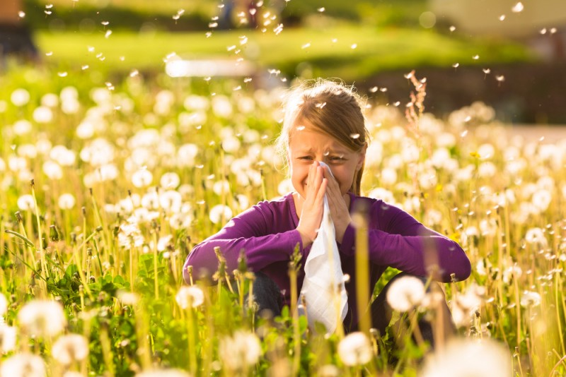 New Allergy Vaccine For Hay Fever Shows Promising Results